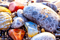 """Petoskey Stones & Other Precious Pebbles"""